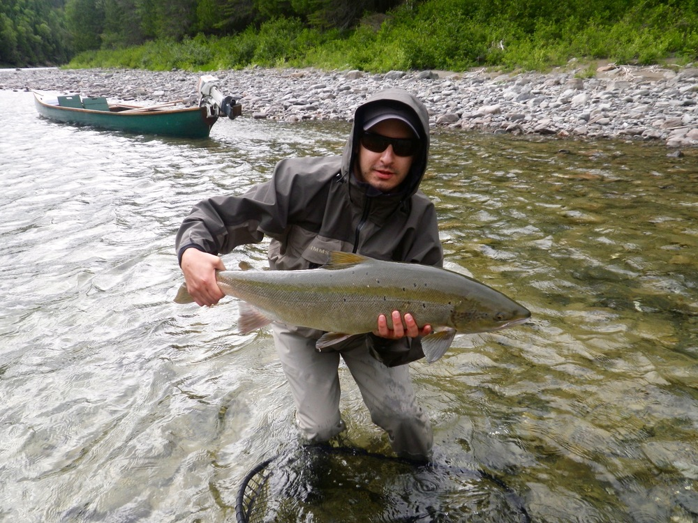 Steven Porcello lands a nice salmon on the Bonaventure, congratulations Steven!