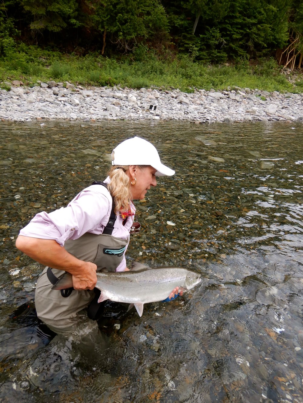 Lynda shields landed this fine salmon on the Bonaventure on her first day out,  well done Lynda!