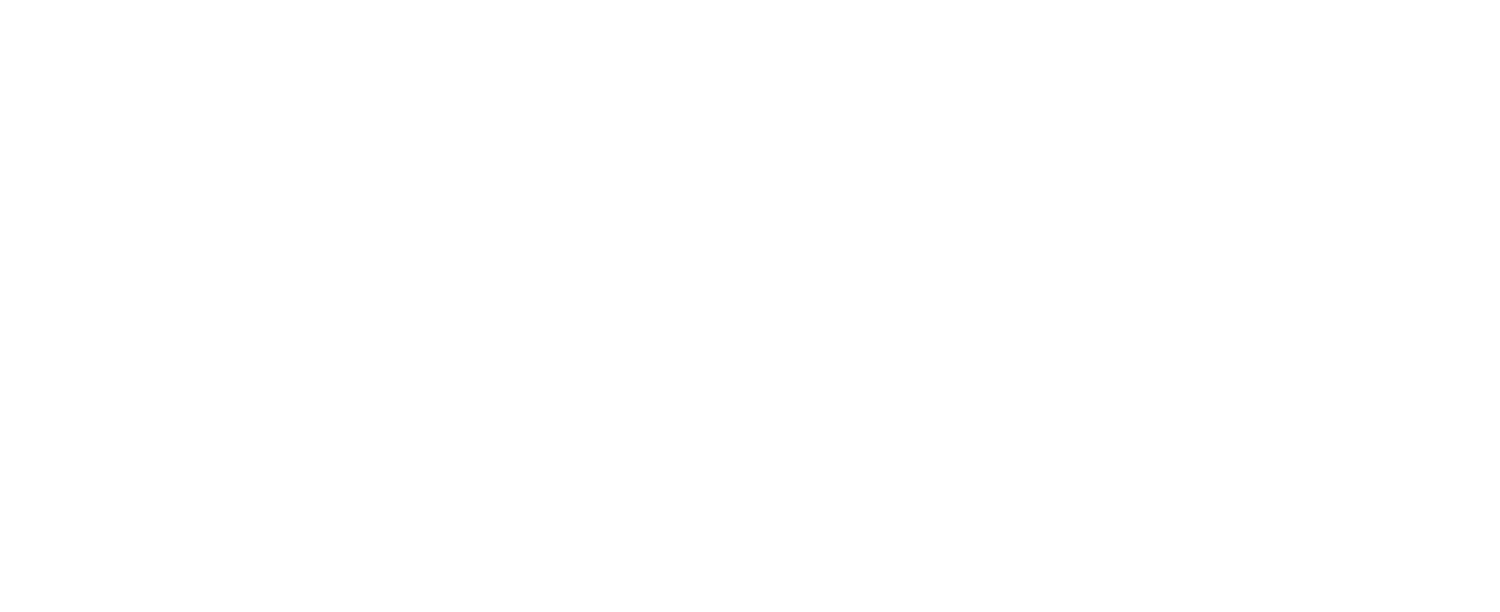 CHAD MCMILLAN Strategies; Raising the Vibration