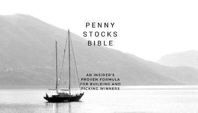 "Download a copy of my book ""Penny Stocks Bible"" and get all my insights and first hand stock market knowledge."