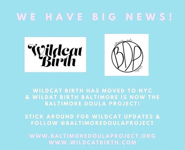 Hey everyone! Liz and Wildcat Birth have moved to NYC and The Baltimore Doula Project is holding down the fort in Baltimore. Check here for coming updates on the work Wildcat will be doing in NY and you can follow BDP @baltimoredoulaproject 💖#baltimoredoula #nycdoula