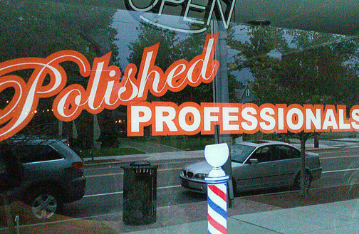 Polished Professionals