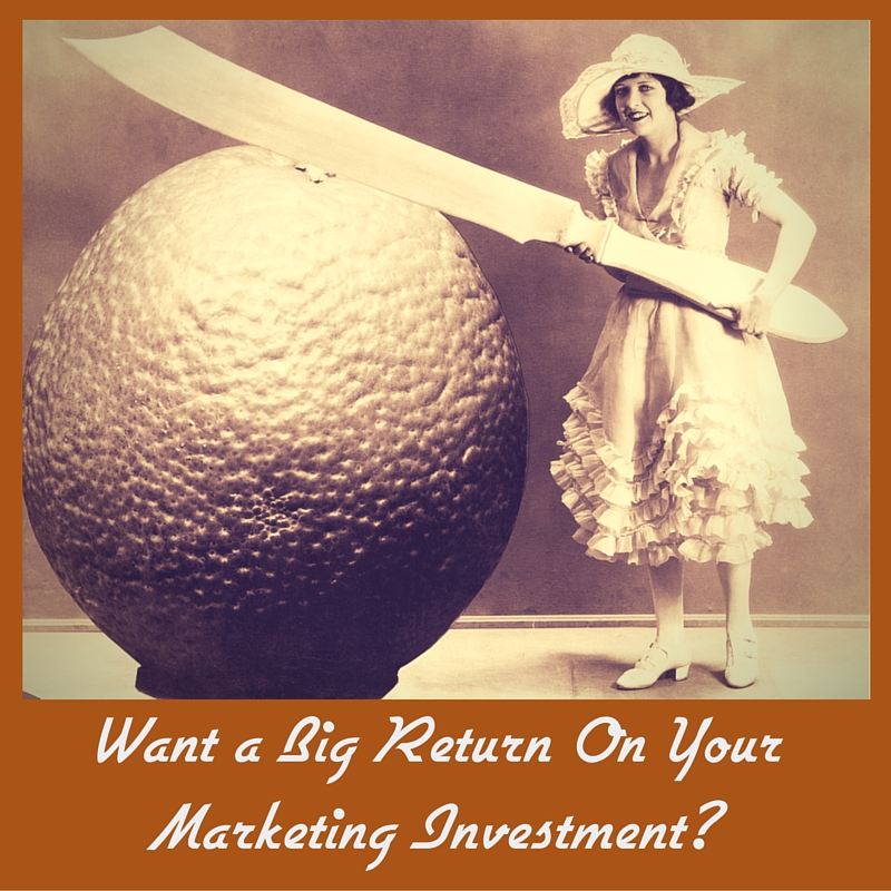 Want a Big Return On Your Marketing Investment?