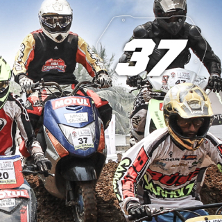 Rider No: 37