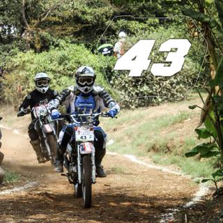Rider No: 43