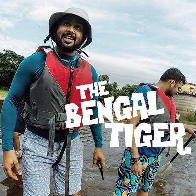 bengal tiger.jpg
