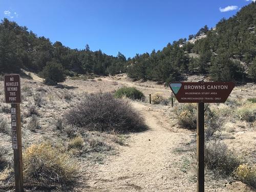 Turret Trail