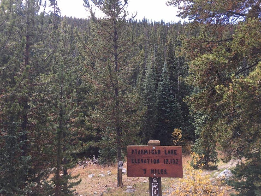 Ptarmigan Lake Trail 1444