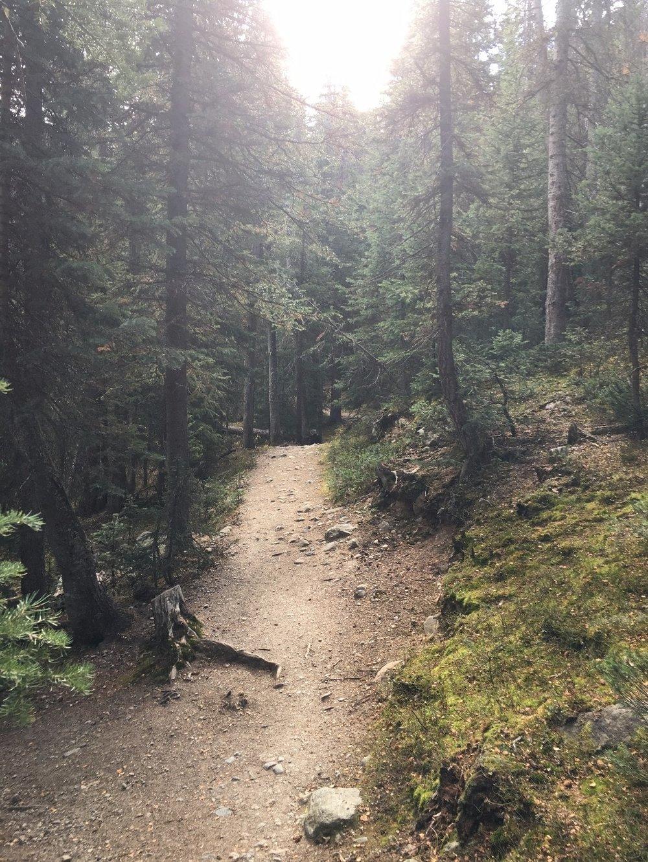Hiking Ptarmigan Lake Trail #1444