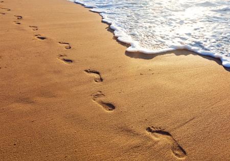 Following an expert's footprints is always faster.
