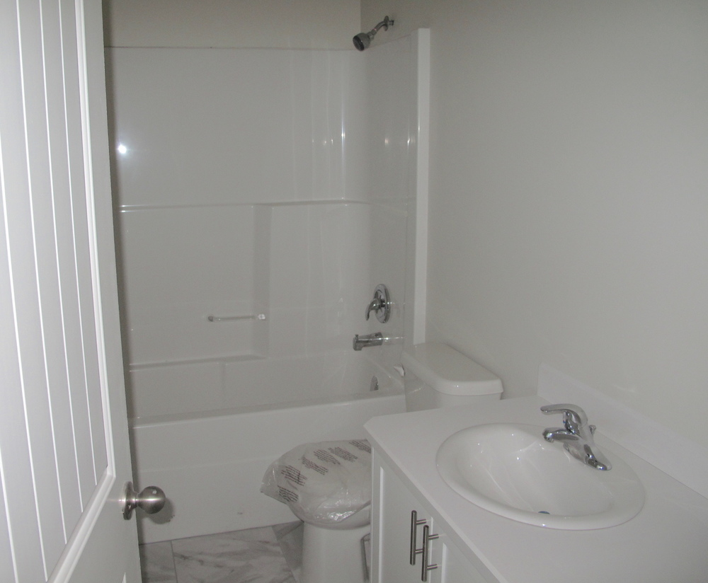 110 Hedley Terrace bath.JPG
