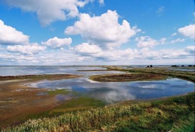 Forsythe-NWR-Water-and-Sky-Raymond-Corwin-400x270.jpg