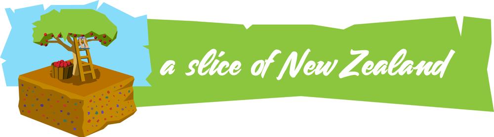 slice-of-new-zealand-fruitcake.png