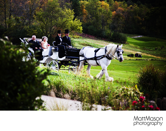 Horse drawn carriage in wedding