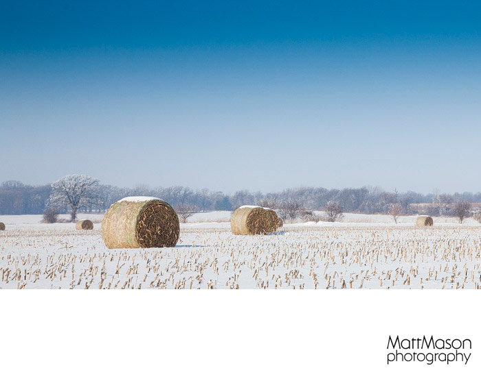 Field of Hay Bales with Snow