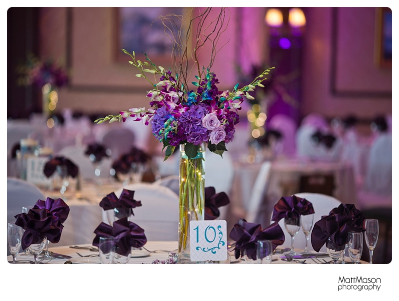Matt Mason Photography Lake Geneva Wedding Bride Groom Reception6