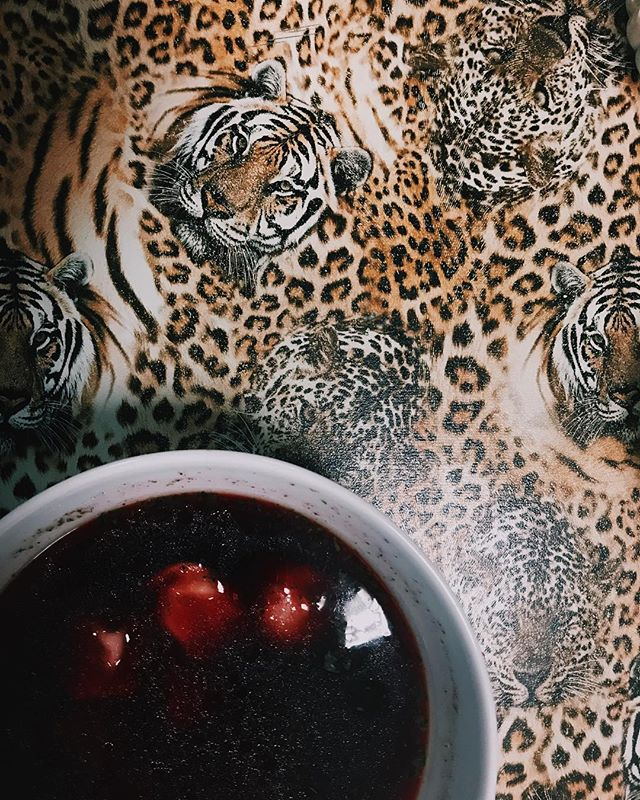 borscht... best served on a tiger themed tray #poland🇵🇱 👏🏻