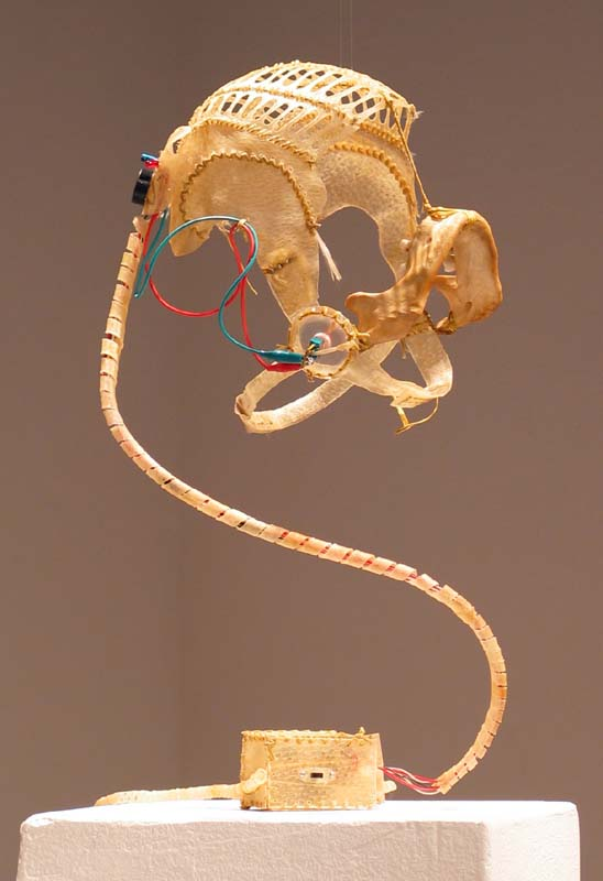 Masticator (2005) : pig rawhide, human mandible bone, electronics