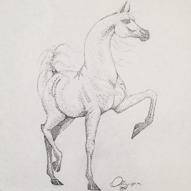 flashback to my favorite intricate drawing, this majestic arabian horse (pointillism sketch)