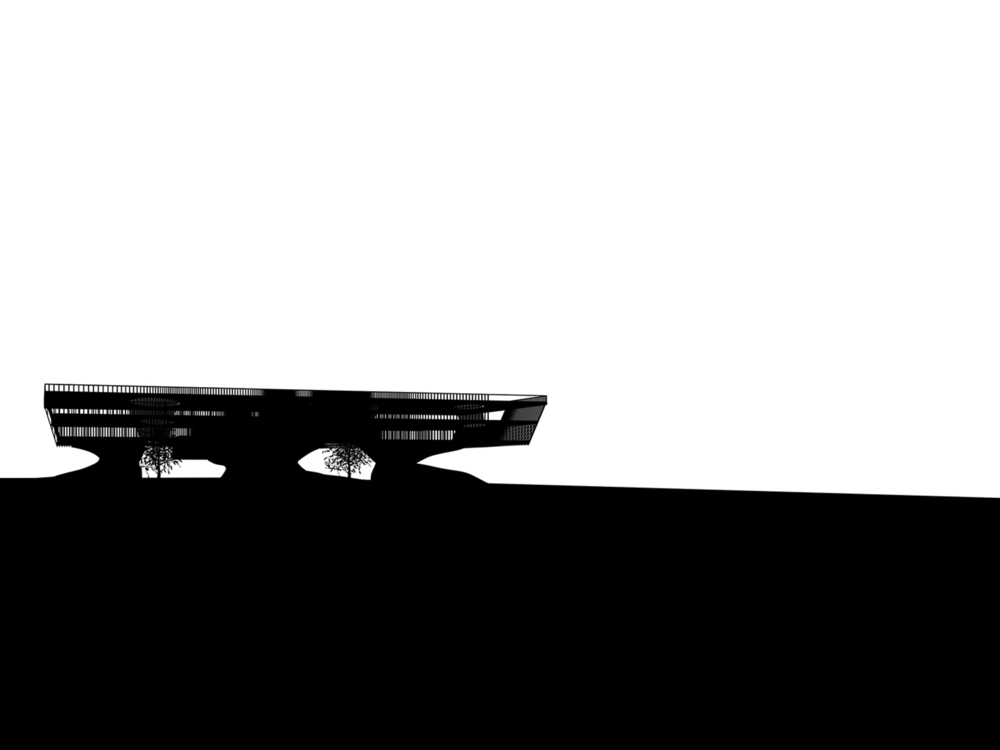 Ctrpt_Silhouette-sq.jpg