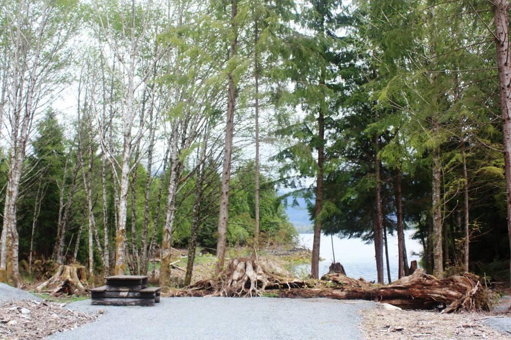 campground3.jpg