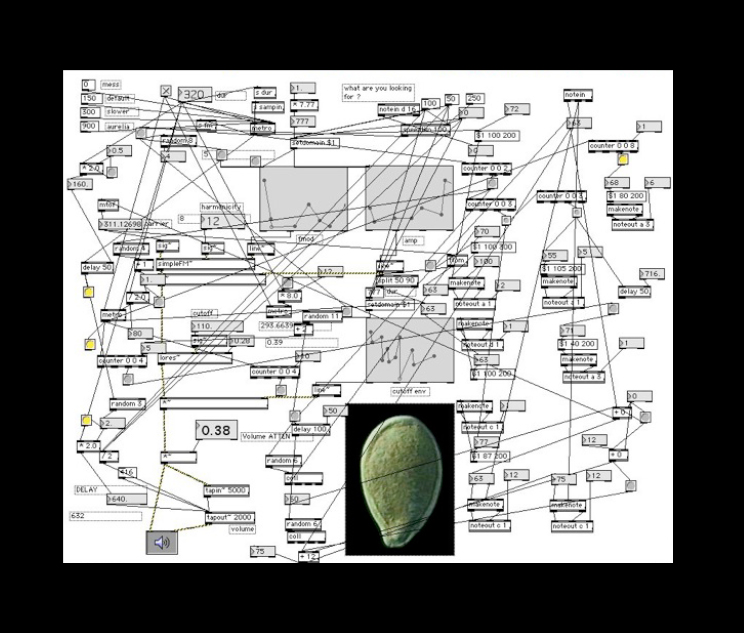 seed( ) plant software: production view,  2001