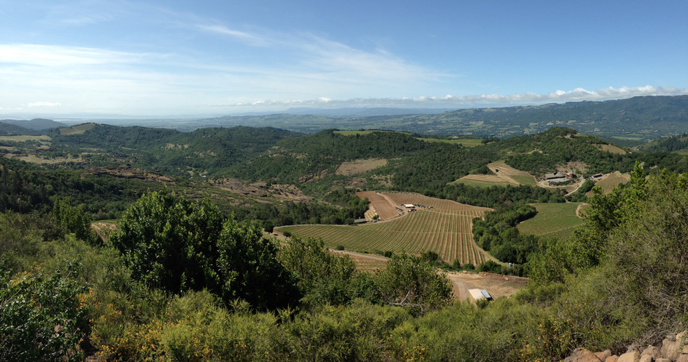 a little panorama of the beautiful valley