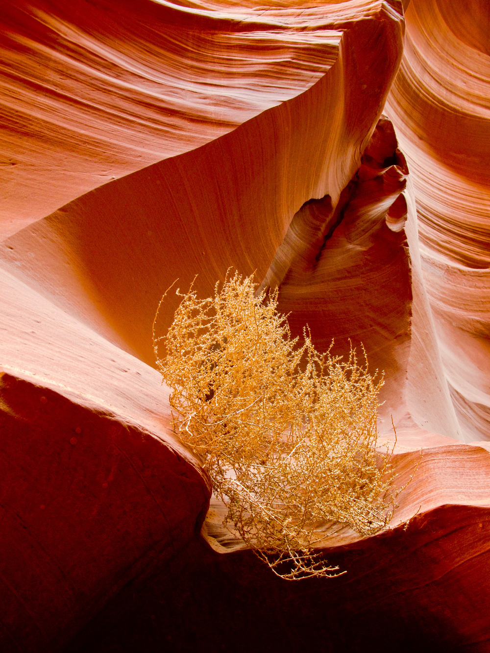 Arizona_Travel_019.JPG