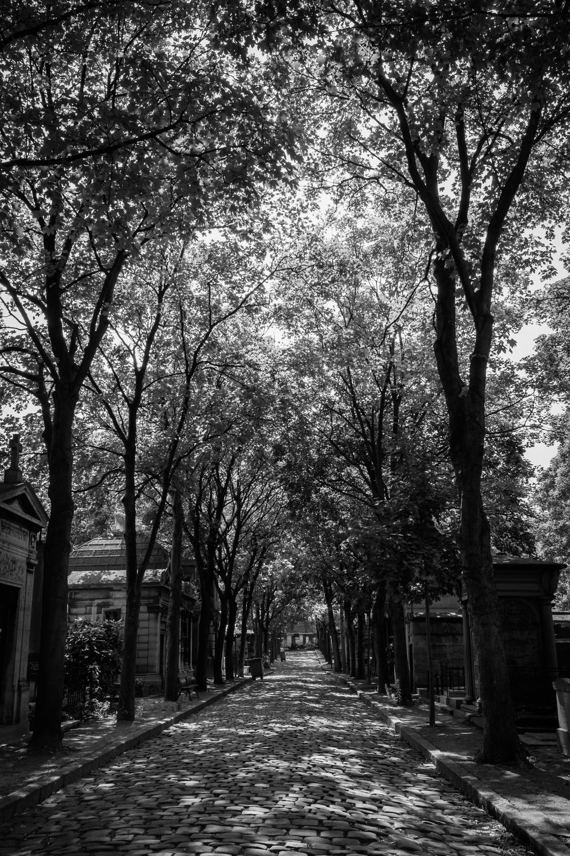 Paris_Travel_Photographer_003.JPG