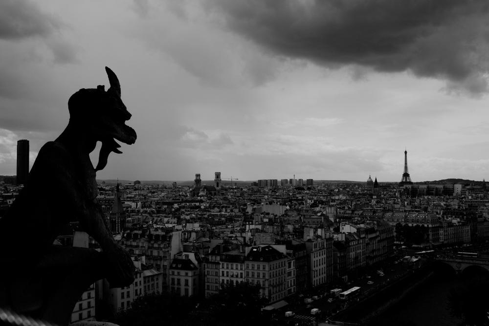 Paris_Travel_Photographer_063.JPG