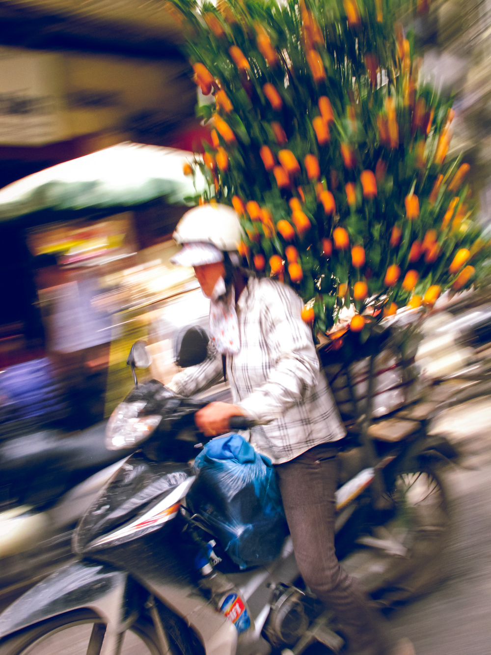 Vietnam_Travel_Photographer_071.JPG