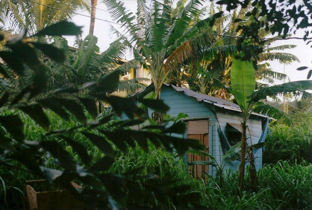 Hawaii_Spring2014_3.jpeg