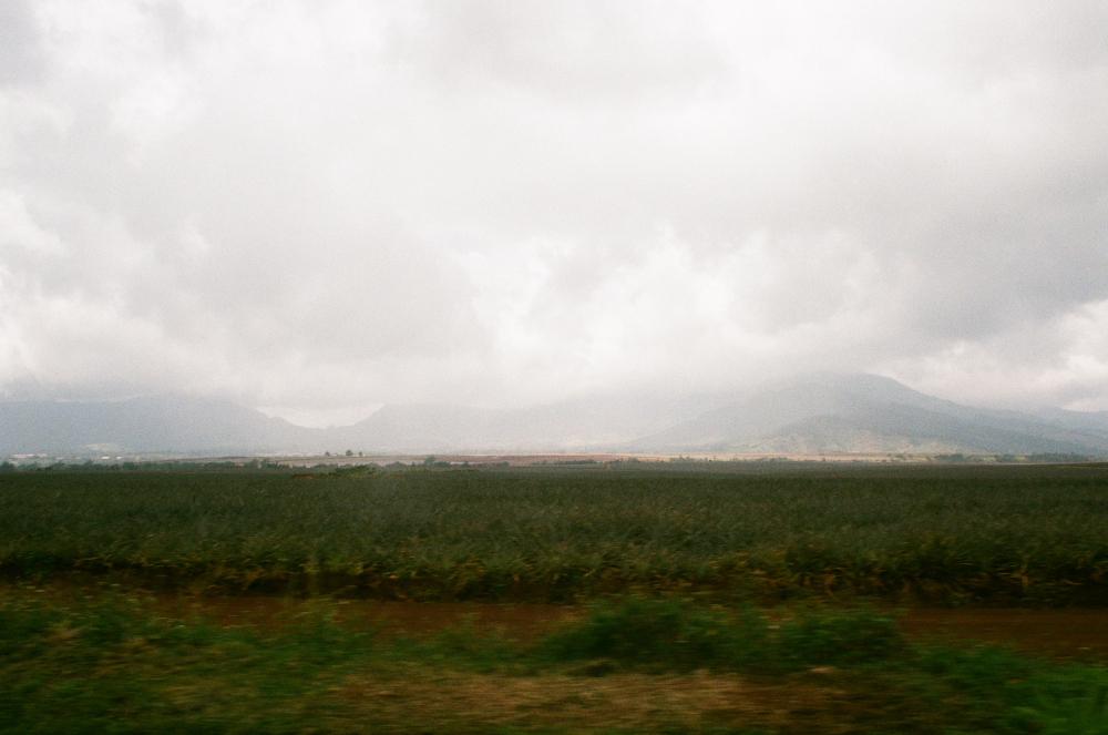 OAHU_MARCH16_FILMFRAMES36.JPG