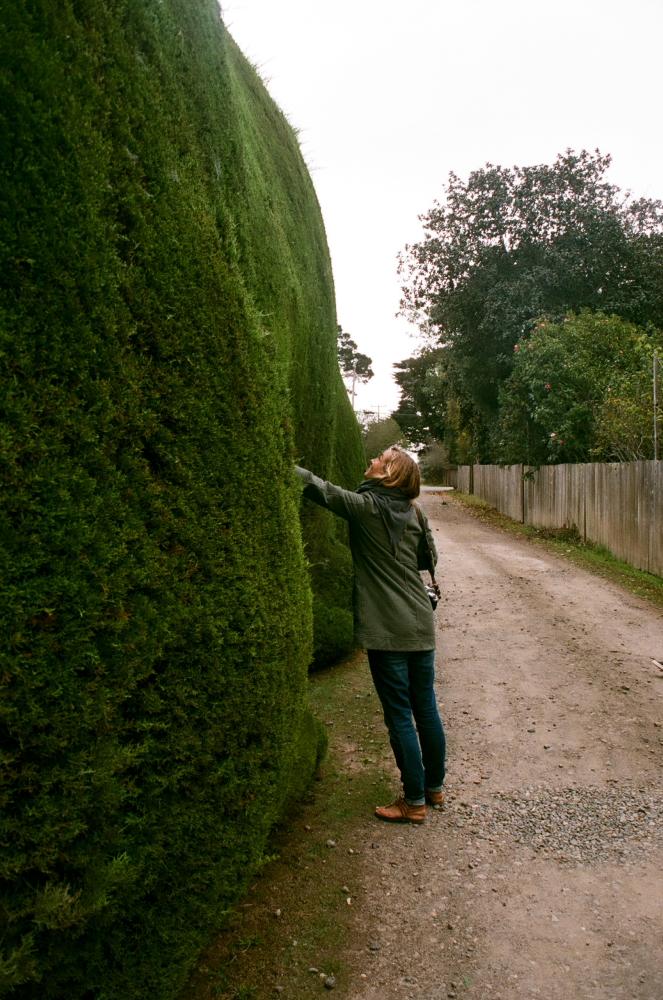 BOLINAS_OCT_16_FILMFRAMES13.JPG