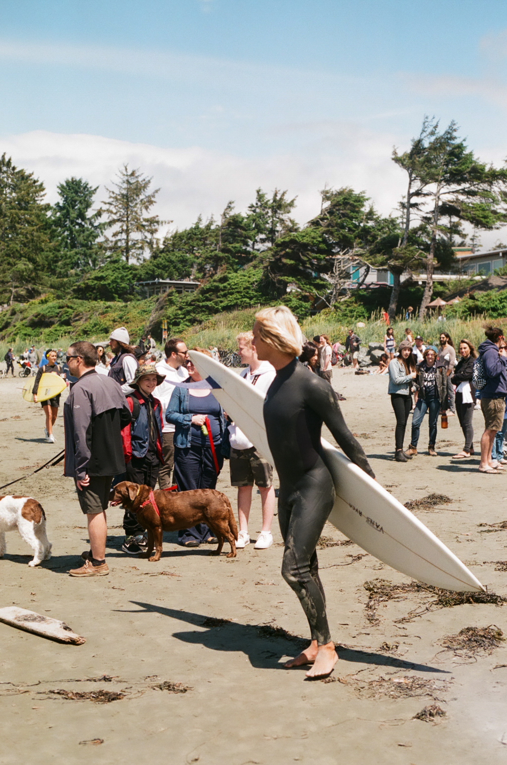 DISPATCH_STAYWILD_TOFINO41.JPG