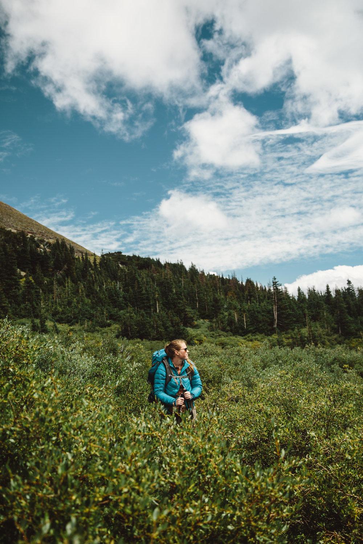 in the brush.jpg