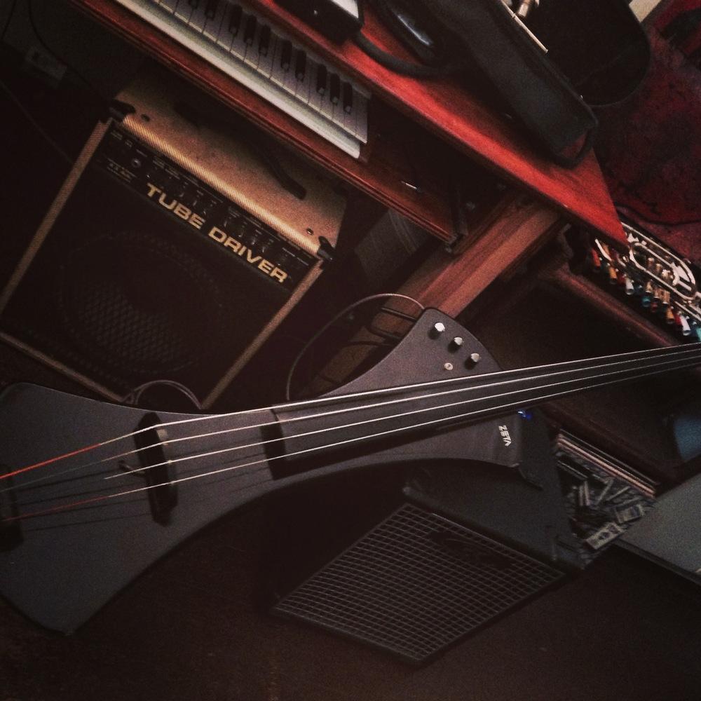 Marion Hayden's bass