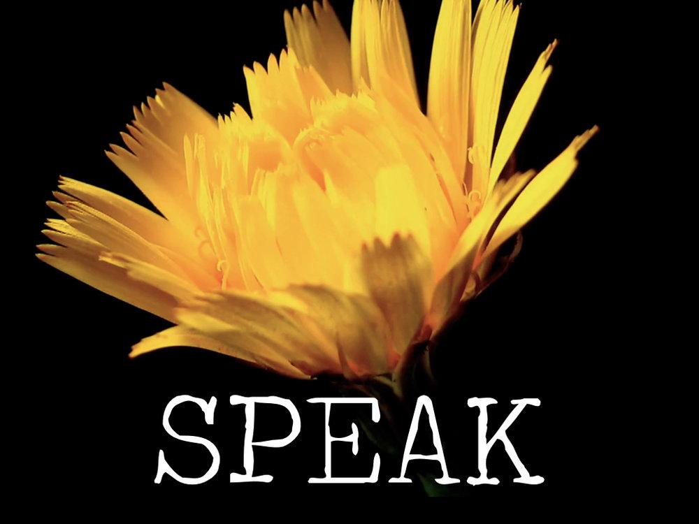 Speak (FINAL).jpeg
