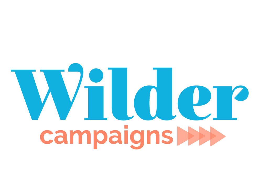 Erin DeMoss - Wilder Campaigns Branding