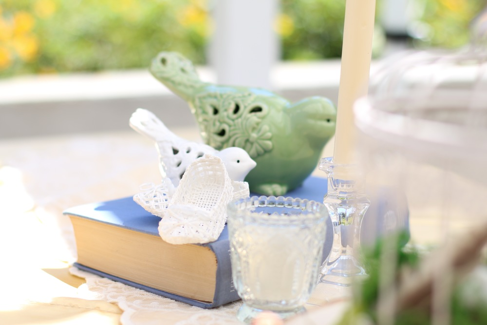 Copy of A dream-come-true vintage birdie themed baby shower! - Prepackaged and Ready to Rent from @inJOYtheParty!