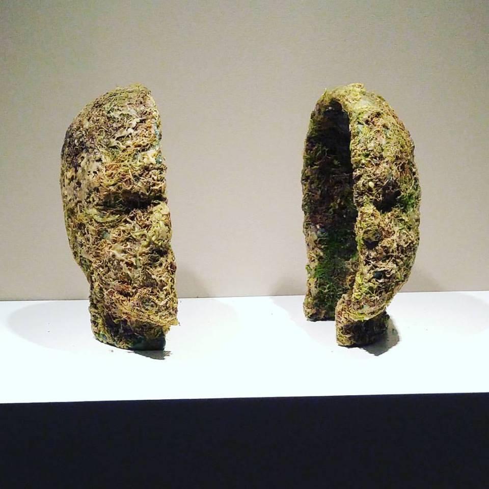 Moss head.jpg