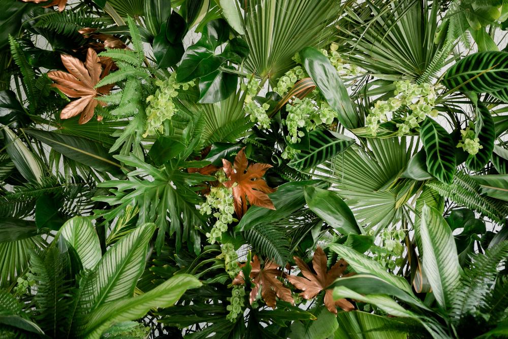 Concrete Jungle-1193.jpg