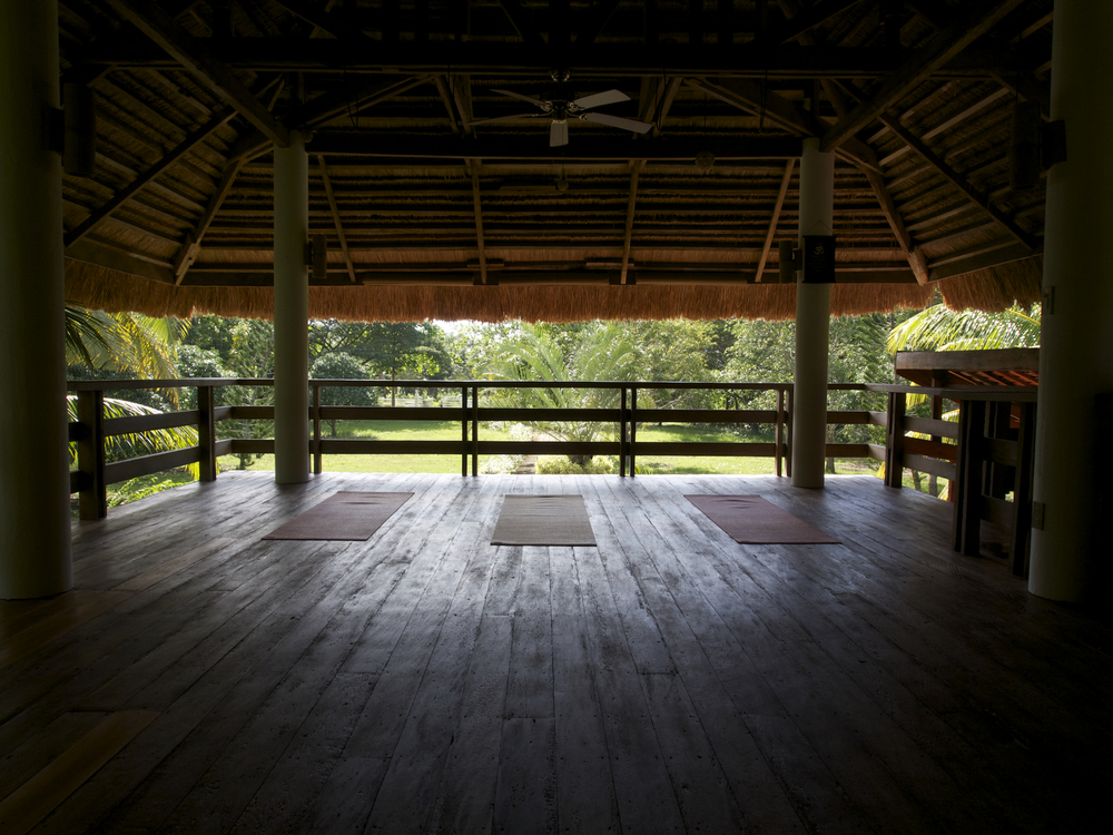 ~Your view from the classroom of the Yoga Barn Panglao.~ Panglao Island, Bohol, Philippines.