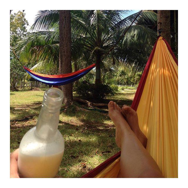 🔅Sunday Rest takes a new deeper meaning when after #yogapractice I can rest on a #hammock drinking our #homemade #coconutmilk enjoying the #sound of the #tropics in our #garden🔅 #sundayyoga #sundayselfie #sundayrestday #yogabarnpanglao #yogastudio #sun #love #joy #happy #namaste #coconut #happyfeet #yogastudent #yogateacher #yogaeverydamnday #yogaeverywhere #panglao #bohol #philippines #afterlight