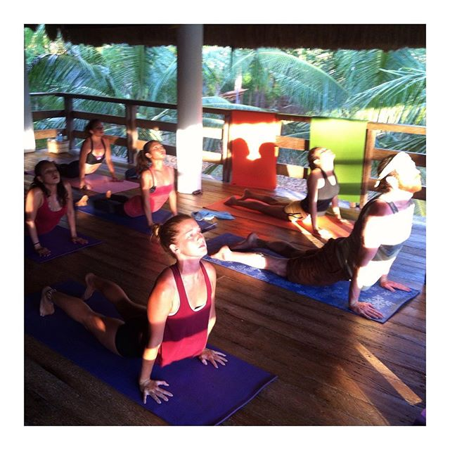 """Sunset practice is so calming and grounding. The """"Sunset Flow"""" are a great way to salute the Sun before it sits behind the trees and to chill the soul with relaxing asana when it gets dark. #yogapractice #yoga #yogastudio #yogapanglao #yogabohol #yogastudents"""