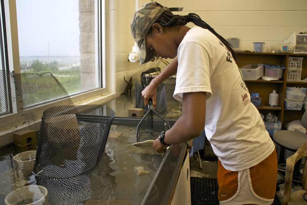 Taylor catches a flounder to use her in seagrass experiment.