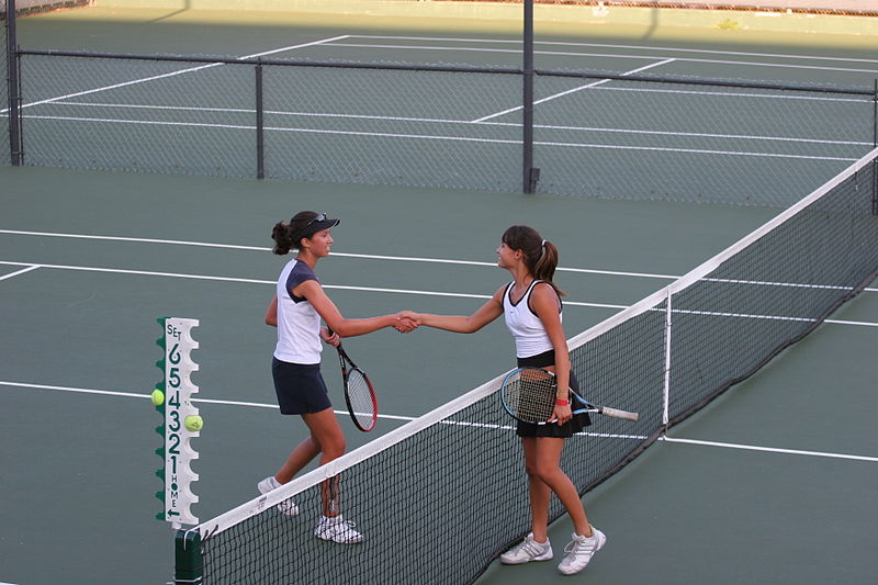 Shaking hands after a sports match is an example of a social norm. (Wiki)