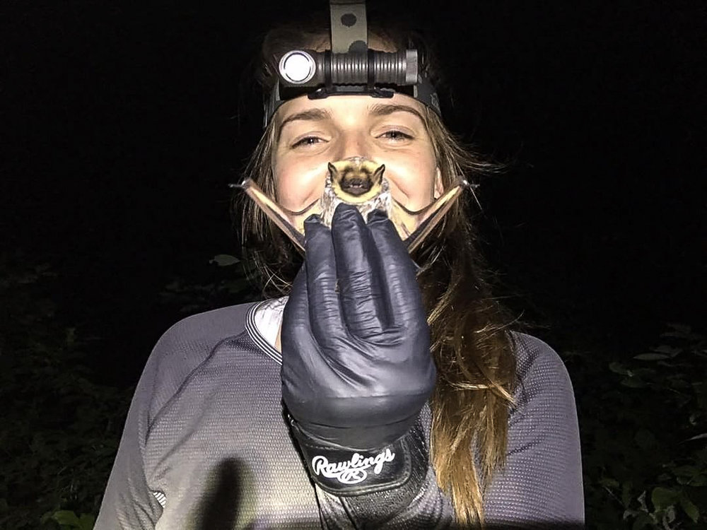 Hannah Hayes is a wildlife biologist - she works with bats, as an environmental consultant. She took this AWESOME bat #scienceselfie and sent it to us on Instagram.