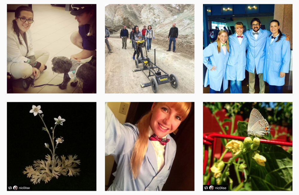 Images posted to Instagram by scientists who took Paige and Becky's LSUSciFund Instagram for Scientists course in February!
