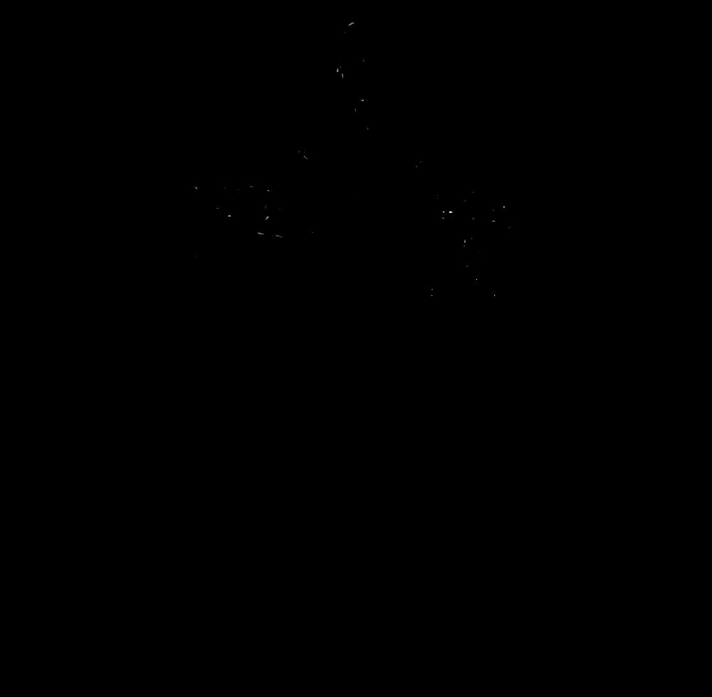 kerrisdale-lumber-full-logo-transparent-.png